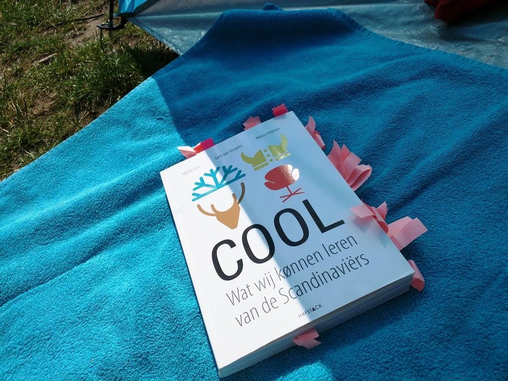 cool wat wij kunnen leren van de scandinaviers lezen