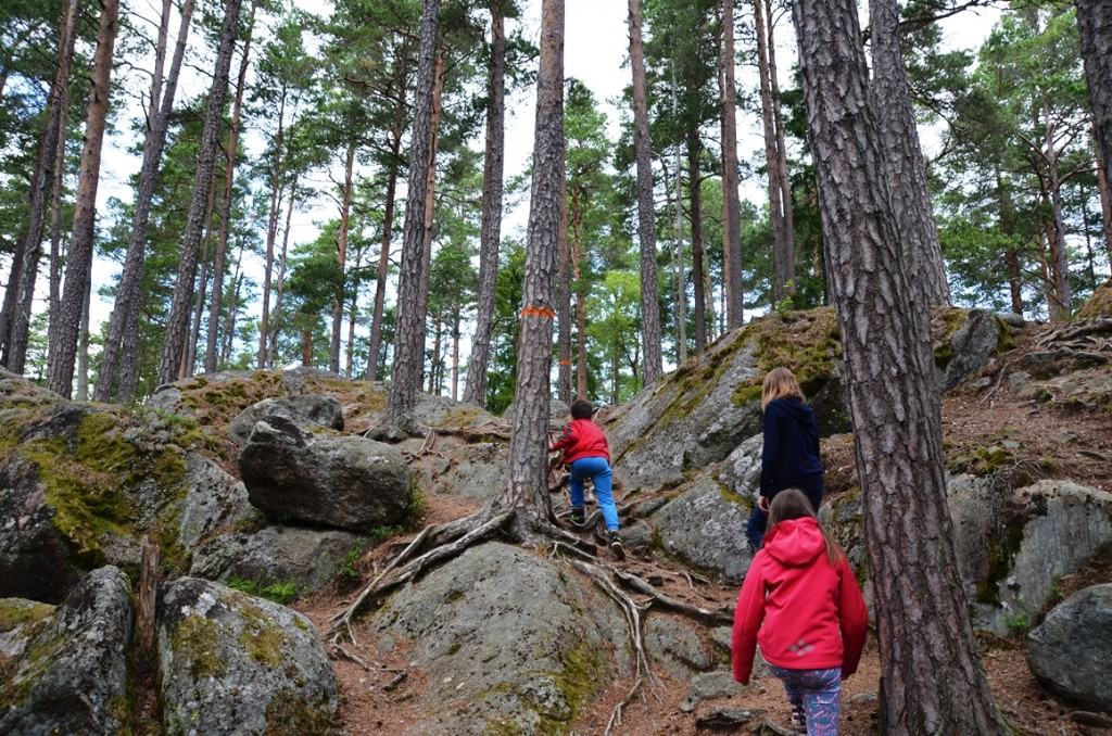 nationaal park tiveden