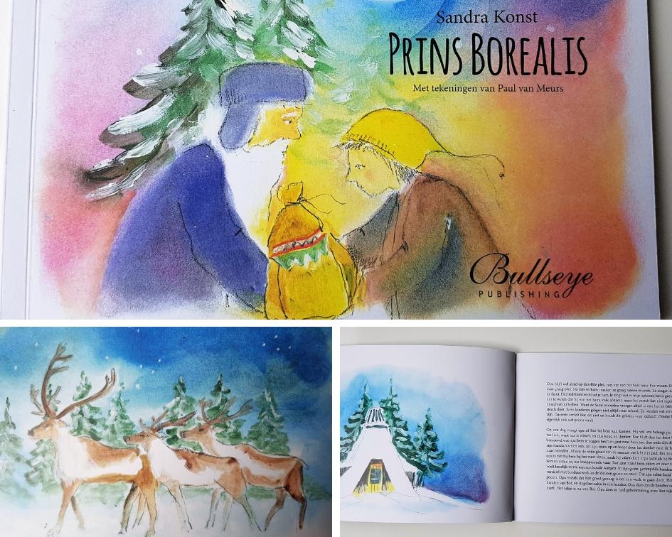 boek prins borealis