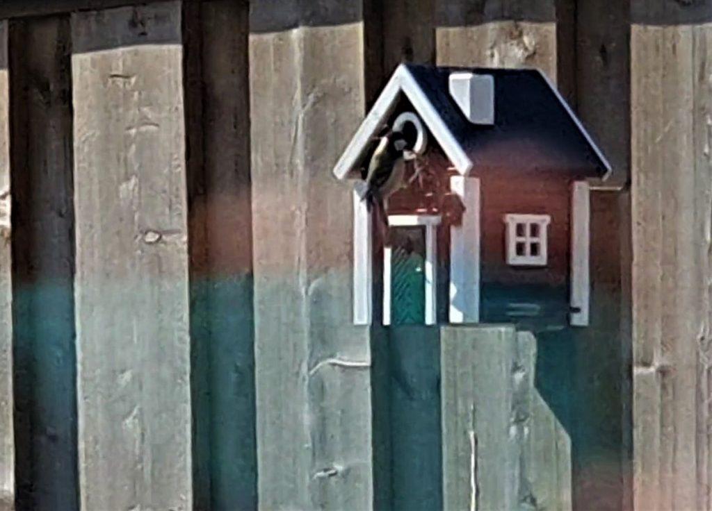 zweeds vogelhuisje